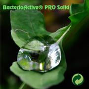BacterioActive PRO Solid